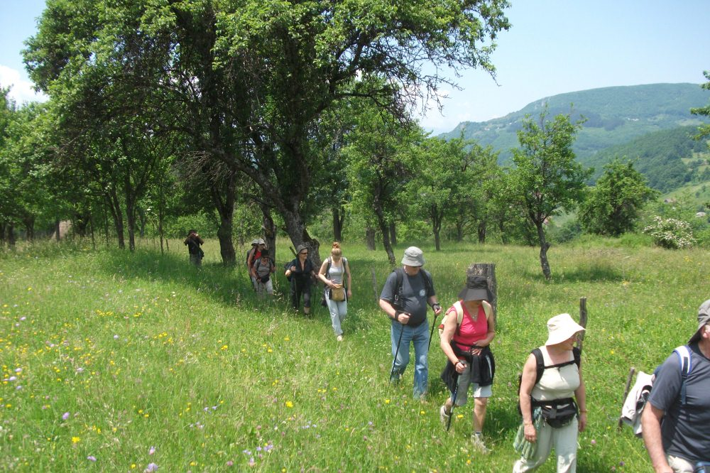 bistrica village trekking