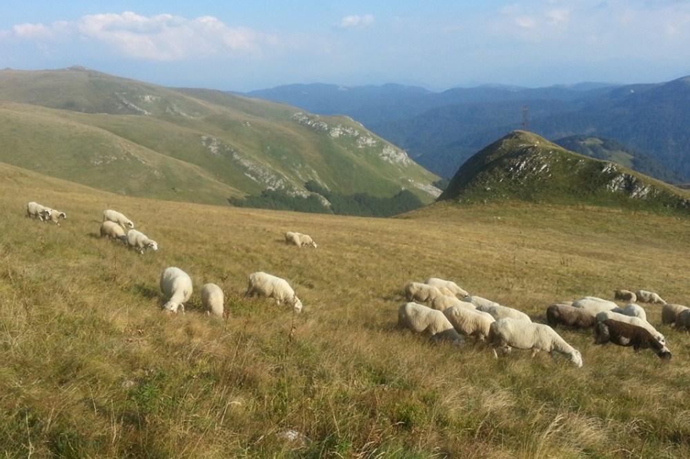montenegro mountain beaty