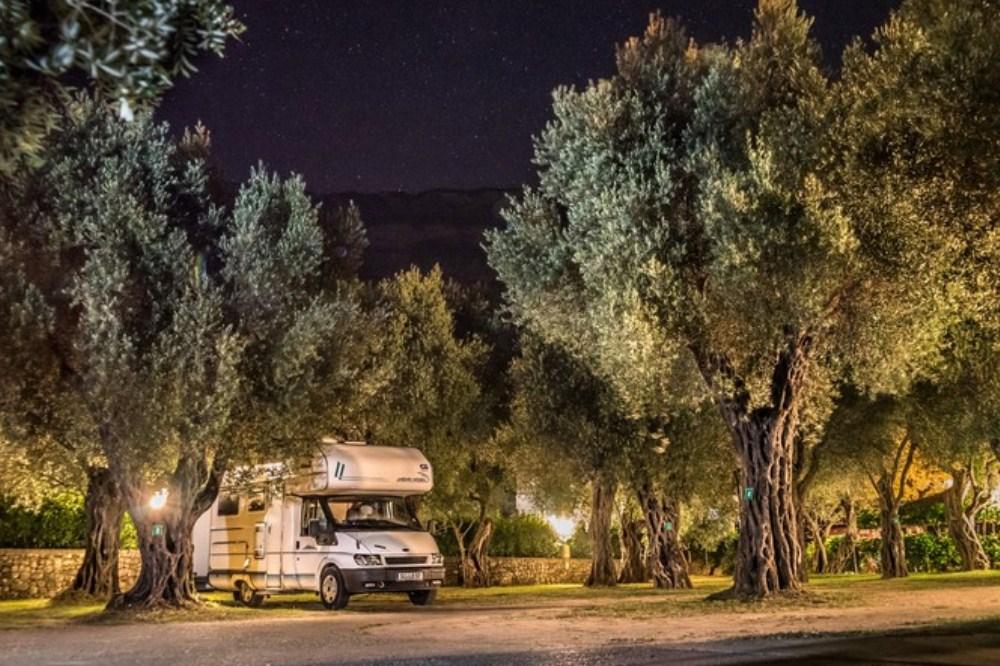 camping montenegro, maslina camp